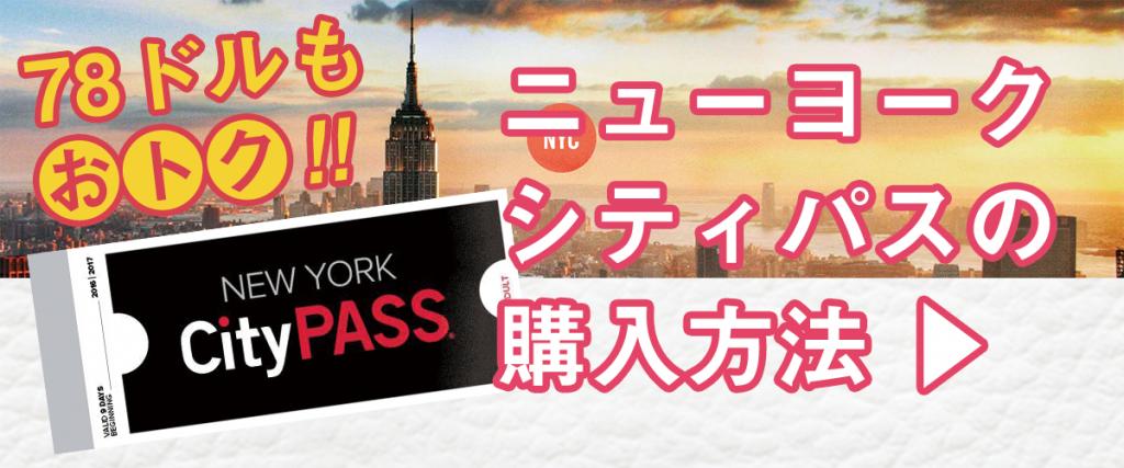 newyorkcitypass1200_600d