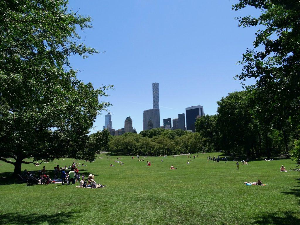 new-york-1582038_1280